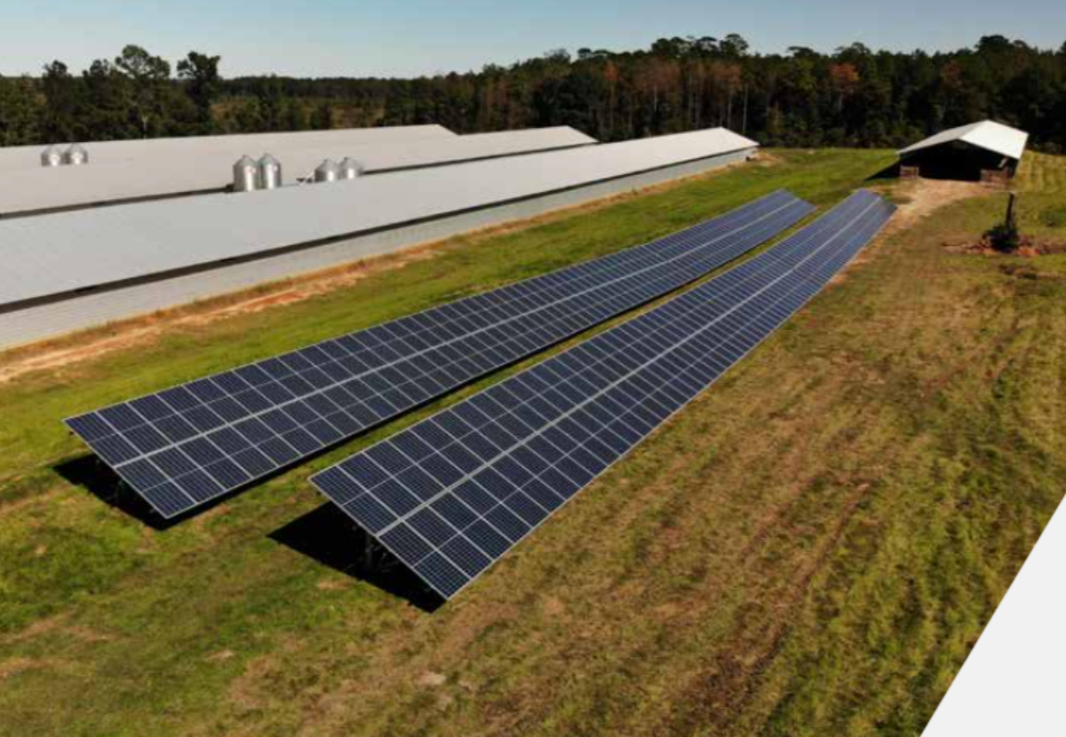 Coastal Solar is setting the standard for renewable energy in the agriculture industry